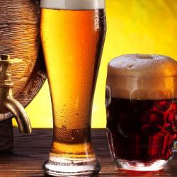 Лучшее пиво Австрии