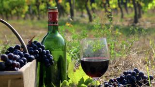 Классификация и вино. Бордо и его классификации