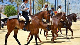 Ярмарка лошадей Feria del Caballo