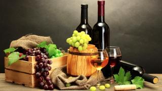 Испанские вина – одни из лучших в мире?