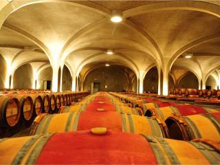 Винная дорога великих вин Бордо - Медок
