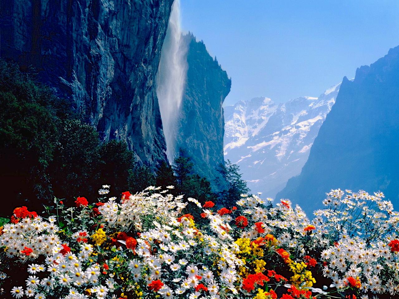 Живописная природа Альп