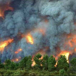 Португалия продолжает бороться с пожарами