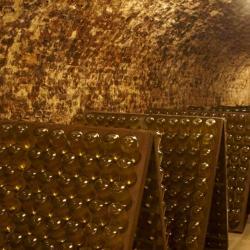 "Завод шампанских вин ""Shlumberger"""