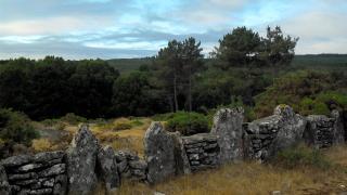 Camino del Norte. День одиннадцатый - Бесконтрольный слалом