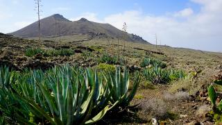 Канарский архипелаг. Остров Фуэртевентура - тропа GR131