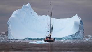 Антарктида с Паганелями