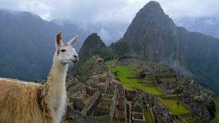 Южная Америка. Самые интересные факты о Перу