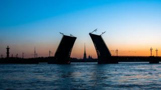 Электронные визы в Санкт-Петербург для иностранцев