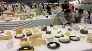 Овьедо станет мировой столицей сыра!