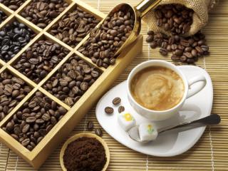История кофейной культуры Венесуэлы